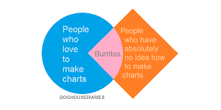 """A Venn Diagram made of a circle intersecting a square. In the circle is written """"People who love to make charts."""" In the Square is written """"People who have absolutely no idea how to make charts."""" And at the intersection of the two: """"Burritos""""."""